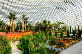 Singapore Gardens by the Bay Entry Ticket with Private Tour and