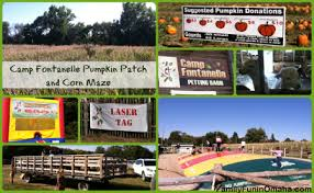 Omaha Pumpkin Patch by Camp Fontanelle Pumpkin Patch And Corn Maze Great Family Fun