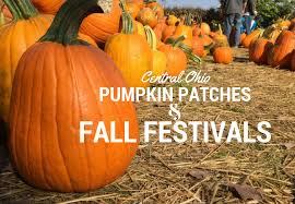 North Lawrence Pumpkin Patch by Central Ohio Pumpkin Patches And Fall Festivals What Should We