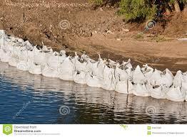sac de inondation les grandes défenses d inondation de sac de 33847996 jpg