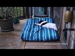 Chew Resistant Dog Bed by Best 25 Xl Dog Beds Ideas On Pinterest Diy Dog Bed Cheap Dog