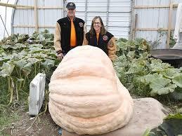 Nekoosa Pumpkin Fest 2017 by Fond Du Lac Co Couple Grows 1 800 Pound Pumpkin