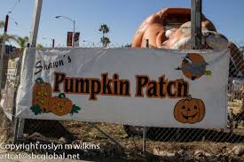 Shawns Pumpkin Patch Los Angeles Ca by October 2013 Rmw The Blog