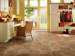 Stainmaster Vinyl Flooring Maintenance by San Diego Vinyl Flooring Style And Design