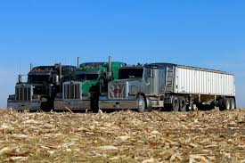 Peterbilt Trucks – JKD Harvesting Trucking Dumpers Pinterest Peterbilt Trucks And 2010 389 Custom Trucks For Sale Used Peterbilt Trucks For Sale 2003 In Colorado For Sale Used On Buyllsearch Rowbackthursday Check Out This 1988 377 View More Freeway Sales In Indiana 579 Find At Arrow Grizzly Pickup Truck Google Search General Used Truck Call 888