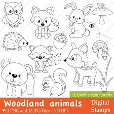 This Is A Set Of 13 PNG Files With Transparent Background And JPG Forest AnimalsWoodland