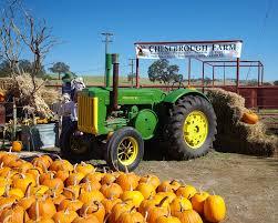 Pumpkin Patch Near El Paso by Chesebrough Farm