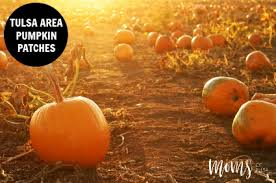 Sand Springs Pumpkin Patch by 2015 Pumpkin Patches In Tulsa Moms Of Tulsa