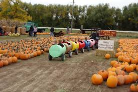 Pumpkin Patch Denver Pa by Food A French American Life