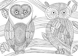 More Mindfulness Colouring Anti Stress Art Therapy For Busy