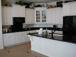 Thermofoil Kitchen Cabinets Online by Dark Kitchen Cabinets With White Appliances Nucleus Home