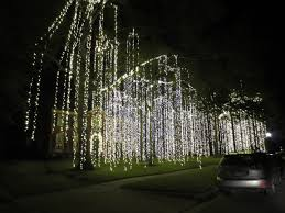 I Guess Im Partial But Like White Lights Here We See A Home That Uses The Multi Color It Can Still Look Good If You Do Job Of Wrapping