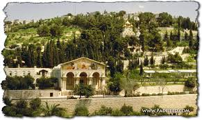 Mount Olives in Jerusalem Israel