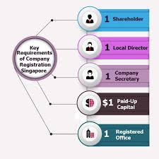 Private Limited Company Singapore A Comprehensive Registration Guide