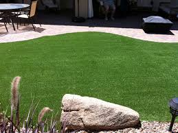 Carpet Grass Florida by Faux Grass Bushnell Florida Dog Running Backyard Landscaping