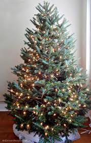 Ways To Decorate A Nautical Christmas Tree Begins With Lights