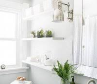 Good Plants For Windowless Bathroom by Cactus In Bathroom Feng Shui Air Plants Orchid South Facing Window