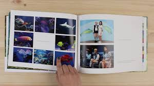 The Best Photo Book Service: Reviews By Wirecutter | A New York ... Golden Coil Planner Detailed Review 1mg Coupons Offers 100 Cashback Promo Codes Aug 2526 Off Airbnb Coupon Code Tips On How To Use August 2019 Find Discount Codes For Almost Everything You Buy Cnet Dear Llie Archives Lemons Lovelys Noon Coupon Code Extra 20 G1 August To Book On Klook Blog The Best Photo Service Reviews By Wirecutter A New York Chatbooks Get Your First Book Free Pinned Discount Ecommerce Marketing Automation Omnisend