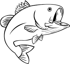 Bass Coloring Pages 22