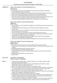 Executive Assistant, Human Resources Resume Samples | Velvet Jobs