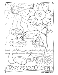 A Coloring Page You Can Print Out And Color JStack Photosynthesis
