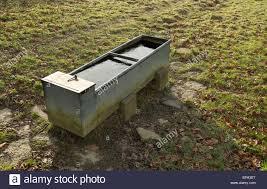 Horse Water Trough Bathtub by Water Trough In Field Stock Photos U0026 Water Trough In Field Stock