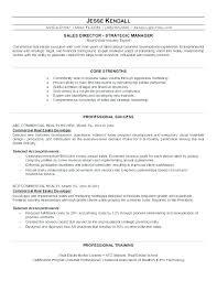 Business Developer Resume Development Sample Manager
