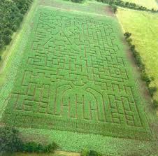 Pumpkin Picking Nj 2015 by Doyle U0027s Unami Farms Corn Maze U0026 Pumpkin Patch New Jersey Haunted