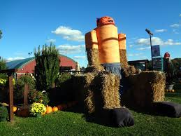 Pumpkin Picking In Waterbury Ct by 2015 Pumpkin Patch At Fair Weather Acres In Rocky Hill