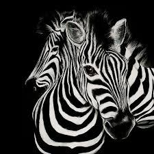 Extra Large Wall Metal Art Zebras Painting Black White Etsy