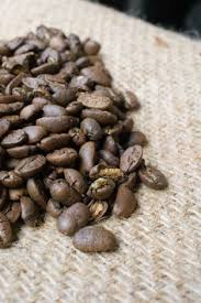 Coffee Beans In Guatemala