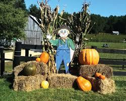 Fleitz Pumpkin Farm Groupon by 18 Pumpkin Farms In Pittsburgh Pa Fernando Torres Of