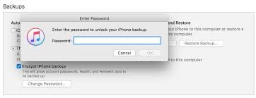 What Is the Password to Restore iPhone Backup iMobie