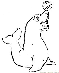 Seal Coloring Book Page