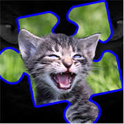 kitty cat buy kitty cat jigsaw puzzles microsoft