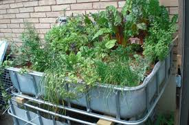 Resourceful Aquaponics For Off-Grid Production - Brite Ideas ... Backyard Aquaponic Gardening System Benefits Of Backyard Greenhouse Aquaponics And Yard Design For Village Systems Aquaponics Twotiered Back Gardening Fish Farming System Food Growing Freestylefarm Pond Outdoor Fniture Design Ideas Diy Pond Images On Wonderful Endless Reviews Testimonial Collage Pics Commercial Farm Most Likely The Effective Sharingame How To