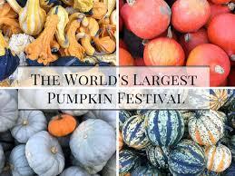 Worlds Heaviest Pumpkin Pie by Best 25 Largest Pumpkin Ideas On Pinterest World U0027s Largest