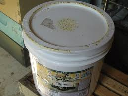 Beekeeping On A Budget | Bee Culture All Products Backyardhive Bee Hives And Bkeeeping Supplies For Sale 10 Frame Langstroth Flow Hive Design Easy To Follow Diy Plans Jon Peters Art Home Top Entrance Keeping Backyard Bees Epic Top Bar Beehive Swarm Trap Youtube Horizontal Topbar Hive Wikipedia Bar Tjs Mad Honey Harvesting Method Mistress Beek How Build A Simple Bkeeping Beehive Tips Part 1 With Bars Built