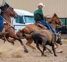 Jake Barnes Tricks To Handling Cattle At Various Speeds - The Team ... Rodeo Champions Driver Does Much More Than Drive Members Photo Gallery 43rd Annual Cherokee Chamber Of Commerce Prca Wgrzcom Star Tries To Rebound From Injury 2017 Carlin Family Produced By Vl Productions And Timeline Buffalo Championship Barnes Sons Company Home Facebook Pit Boys News North Coast Journal Jake Clay Obrien Cooper At The 2014 Wrangler National Reaching For Success With The Team Roping 7x World Champion Saddle Poster Carson Valley Times American Cowboy Western Lifestyle