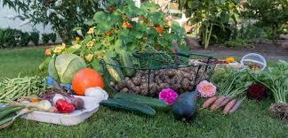 Start Your Own Organic Garden Here s How – Gardening Magazine