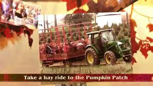 Pumpkin Patch Frederick Md by Gavers Farm In My Airy Fall Festival Youtube