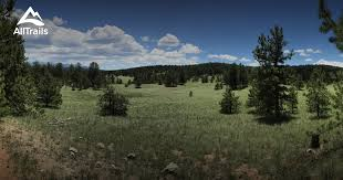 best trails in florissant fossil beds national monument 130