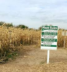 Best Pumpkin Patch Wichita Ks by Get Lost In These 11 Awesome Corn Mazes In Kansas This Fall Only