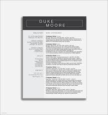 Social Work Resume Template New Resumes Best Unique Examples Ecologist
