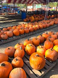 Underwood Farms Pumpkin Patch Hours by Life By Meli October 2017