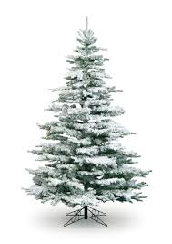 Flocked Real Christmas Trees by 7ft Artificial Christmas Trees Uk Christmas Lights Decoration