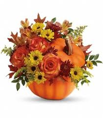 Pumpkin Patch Santa Rosa by Grohe Florist U0026 Ghse Pumpkin Patch Santa Rosa Ca 95404 Ftd
