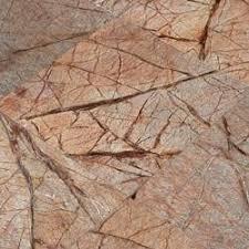 cabot marble tile cafe forest 12 x12 polished bath tile