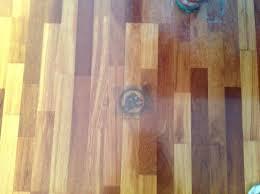 Dog Urine Odor Hardwood Floors by Removing Pet Urine Stains From Hardwood Floors Thriftyfun