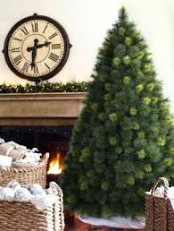 Ten Most Popular Trees Balsam Hill Blog Artificial Christmas Tree Scent Sticks Scotch Pine Catchy Collections Of Spray Fabulous Homes Best